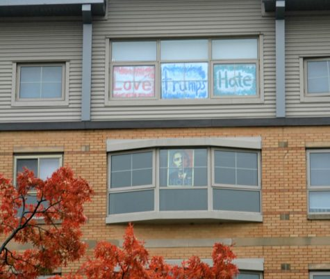 In response to the Trump flags, other students displayed their political views on their windows as well.