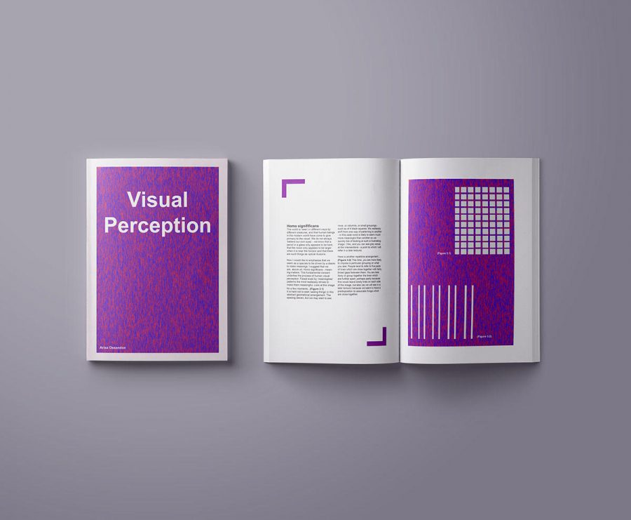 Visual+Perception+Book+Arisa+had+made+for+a+Typography+class.