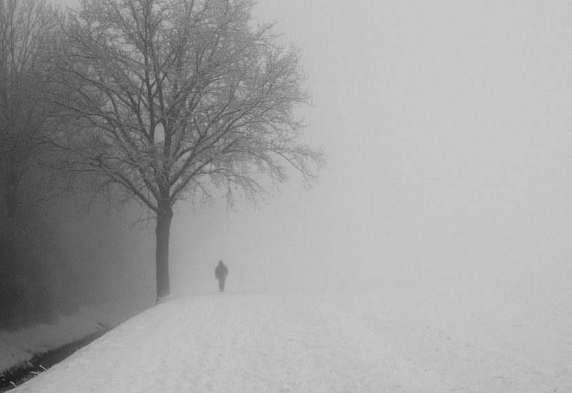 As the winter draws nearer, many find themselves suffering from Seasonal Depression.