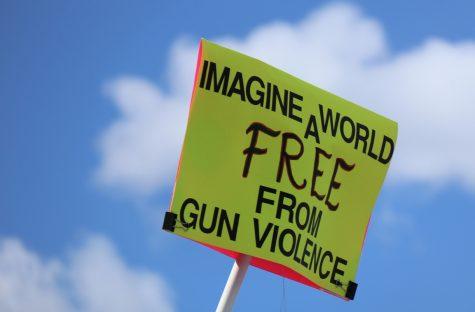 The U.S. Needs New Zealand's Gun Laws