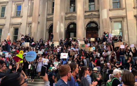 Children Strike Back Against Climate Change