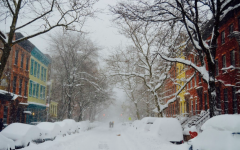 Bundle Up: Adapting to NYC Weather