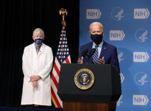 Photo Courtesy/ Flickr NIH Image Gallery